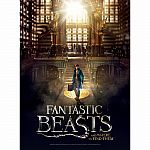 Fantastic Beasts and Where to Find Them Macusa 500 Piece Poster Puzzle
