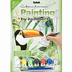 Jungle Toucan - Paint by Number