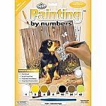 Daschund Puppy - Paint by Number