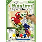 Bamboo Parrots - Paint by Number