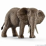 African elephant (Female)