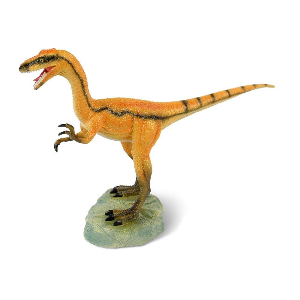 Compsognathus Sense Compsognathus Collection Toy Collection Dinosaurs Dinosaurs 0X8PONnwk