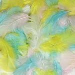 Turkey Plumage Feathers - Spring Colours Assortment