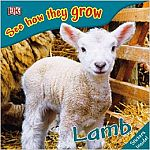 Lamb - See How They Grow