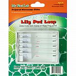 Lily Pad Leap 5pc Slide Set