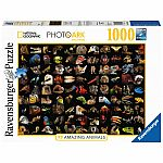 99 Stunning Animals - Ravensburger